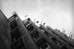 Bratislava (Peter Lukáč) Tags: bratislava slovakia slovensko town city street architecture building fomapan foma