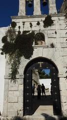 Caper Plants (RobW_) Tags: caper plants stgeorgekrimnon monastery navagio zakynthos greece wednesday 10oct2018 october 2018