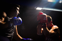 37717 - Face off (Diego Rosato) Tags: boxe boxing pugilato boxelatina ring match incontro rawtherapee nikon d700 2470mm tamron pugno punch face off backlight controluce