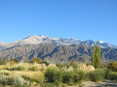 CIRCUIT INMERSION (terraexperiences) Tags: terraargentina argentine argentina terra