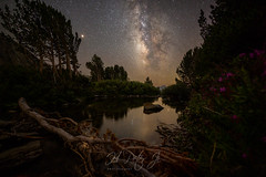 Straight out of fairy tale (ScorpioOnSUP) Tags: adventure astrophotography california californialandscape canoneos creek ducklake galaxy jmt jmt2018 johnmuirtrail landscape landscapephotography longexposure meteorshower meteoroids milkyway nature nightsky outdoors perseids seekingsolitude sierranationalforest sierranevada stars thruhike tranquility trees water wilderness