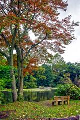 Autumn Feelings (JMS2) Tags: autumn fall scenic reservoir pond lake foliage colors landscape larchmont nature park bench
