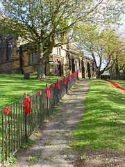Poppy Path (Glass Horse 2017) Tags: eastcleveland brotton stmargaretofantioch brottonparva handmade plastic bottlebottoms painted upcycling remembrance centenary endofww1 fence path shadows wreaths handknitted