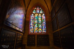 Bremen Cathedral (Stefan Beckhusen) Tags: bremen hansestadtbremen cathedral dome church religion indoor spirituality building architecture environment ambiente ancient medieval wideangle city town window churchwindow