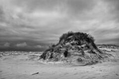 High Ground (delmarvajim) Tags: bw blackandwhite monochrome beach assateagueisland sand sanddunes sky clouds beachgrass stormy overcast