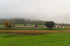 Cady Farm Fog (dfbphotos) Tags: 2018 october fall tioga nature fog buildingsarchitecture farm barn tiogacounty places westfield northforkroad pa usa