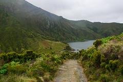 Lagoa do Fogo (Viv Lynch) Tags: portugal travel azores azoresislands europe açores nature hiking fogo lagoa lake mountain mountains foggy lagoadofogo trail saomiguel forest trees