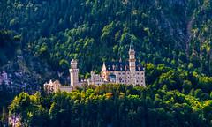 Neuschwanstein Castle (achim-51) Tags: berge wald castle schlos neuschwanstein castleneuschwanstein schlosneuschwanstein allgäu bayern de germany panasonic dmcg5 lumix bäume tannen