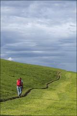 ST-VALENTIN 03F (BAUWENS RENE) Tags: nikon d750 dolomiten dolomiti dolomieten trentinoaltoadige sudtirol zuidtirol wandeling walking promenade seiseralm seis siusi stvalentin