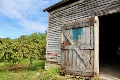 Old Barn (Read2me) Tags: cye tcfe farm orchard barn door wood sky tree pregamewinner ge