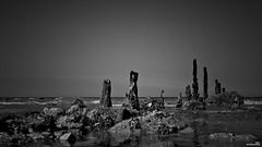 Pieux (Un jour en France) Tags: monochrome mer pieux noiretblanc noiretblancfrance black