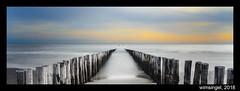 Zoutelandestrand met palen (wimsingel) Tags: strand zoutelanden palen le long exposure avond zon zonsondergang beach sun set nikon d7000 symetrie