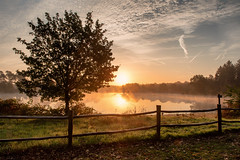 Feeling Happy (Dannis van der Heiden) Tags: birdlake lake forest fence dentreek tree water sunbeam sunrise dawn amersfoort leusden netherlands nikond750 d750 tamron2470mmf28 autumn fog brightcolors grass mist sky field park landscape hdr