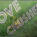 LOVE crushes hate