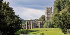 Fountains Abbey (mandysp8) Tags: nationaltrust uk cistercianmonastery northyorkshire england grass morning trees