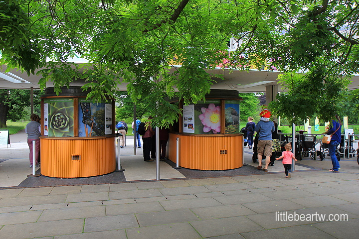 邱園Kew Gardens-10