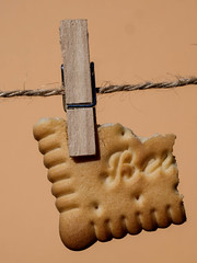Biscuit sec - cookie- B-Food- HMM (jeanclaude-Betapixel) Tags: jcbetapixel installation cookie biscuit «macromondays