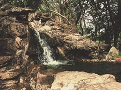 peacefully (daniellecassita) Tags: waterfall nature mobile iphonese caldasnovas goiás go brasil green stones water brazil