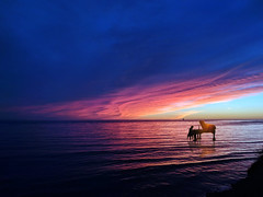 The Legend of the Pianist on the Ocean (The Lad From The Countryside) Tags: legend leggenda sea mare sole sunset sun dark black red piano pianist blue fire robe yes yellow sky beauty good nature land landscape beach ocean photo pic photoshop adobe