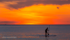 The Old Man and the Sea      XOKA2069s (Phuketian.S) Tags: sea skyline people oldman ocean landscape water paddleboard sup paddle board naiharn beach phuket island thailand phuketian nature sky cloud reflection wave andaman sunset camera outside sun
