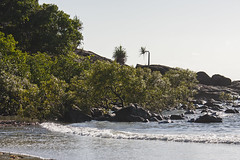 Rocky Headland with Mangroves (oz_lightning) Tags: 14xtc australia canon40d canonef70200mmf4lisusm farnorthqueensland portdouglas qld beach coast ecology landscape mangroves nature seascape queensland aus