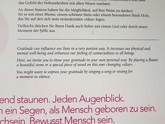 Wilderswil scenes 101 (SierraSunrise) Tags: switzerland wilderswil europe gratitude