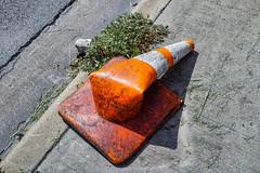 cone (seokinskywalker) Tags: street road object sigma dp2 merrill