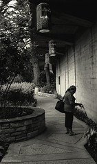 (photo.po) Tags: canont6 canonphotography canon blackandwhitephotography blackandwhite handheld availablelight river walkway path urban riverwalk sanantonioriverwalk sanantonio texas