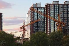 Circling Cranes (AJ - Andrew Jones) Tags: city beijing china skyscraper urban building sky evening light crane industry construction contrast