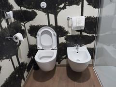 Ark Hotel | Verona, Italy (sonic010739) Tags: olympus omd em5markii olympusmzdigital1240mm italy verona