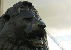Trafalgar Square (jacquemart) Tags: trafalgarsquare london statue landseer lion