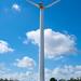 Høstfest underneath the wind turbine