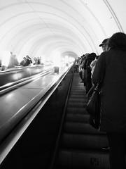 In metro (msergeevna) Tags: metro prestigio moscow russia monochrome underground
