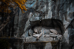 Lion Monument (TheViewDeck) Tags: monument lion lucerne luzern travel europe switzerland theviewdeck explore