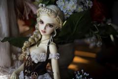 never gonna give you up (Sugar Lokifer) Tags: oasisdoll natalie bjd sqlab hybrid ball jointed doll