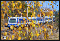 "Golden Rain ("" Wiener Schule "") Tags: öbb oebb obb austria 4020 emu train commuter zug eisenbahn railway railroad"