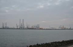 Independence of the Seas (Hugo Sluimer) Tags: independenceoftheseas rotterdam vlaardingen zuidholland holland nederland onzehaven haven portofrotterdam port nlrtm