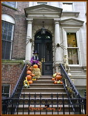 Upsale Scary (westmin87) Tags: halloween townhousedecorations uppereastside pumpkins witches spiders skeletons gords