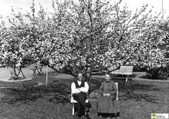 tm_5763 (Tidaholms Museum) Tags: svartvit positiv gruppfoto parksoffa 1935 1930talet