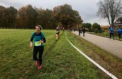 Haarlerbergloop 5 km (1)