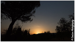 Tuscan sunset (cee live) Tags: 2017 august italy july tuscany countryside olivegrove summer sunset villa flickr canon silhouette