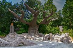 Un arbre musicien... (Crilion43) Tags: arbres région angers feuillesfeuillage maineetloire divers instrumentsdemusique parc paysdelaloire ciel violonflûtetambour paysages nuages villes jardin