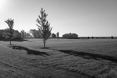 Illinois Morning (raymorgan4) Tags: shadows sunrise dawn illinois gilman trees barn fields usa fujifilmx100f fujifilmglobal