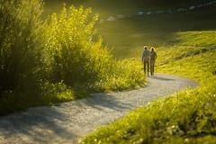 Hug (novak.mato91) Tags: green slovenia slovenija landscape nature nikon d7200 tamron70200 sigma1750 sunset sunrise geoslo