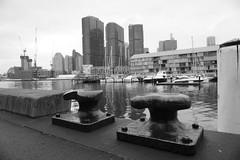 Bollards (Marine Explorer) Tags: marine coastal australia marineexplorer