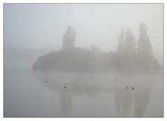 Misty water (donbyatt) Tags: furztonlake miltonkeynes autum morning water mist tranquillity early colours