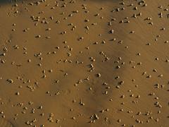 St Helens Beach Sand Abstract-EA100663 (tony.rummery) Tags: abstract beach em10 england eveningsun iow isleofwight mft microfourthirds omd olympus sand sthelens unitedkingdom gb