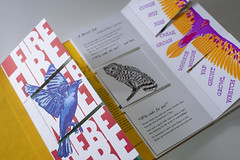 Bird Talk Book (Virginia Humanities) Tags: book birdtalk vabook centerofthebook letterpress art artbook flagbook virginiahumanities charlottesville va usa