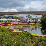 Epcot - Flower and Garden Festival thumbnail