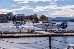 The Business is Good at Harbour Air (MIKOFOX ⌘ Will Be Deleted Soon!) Tags: canada plane showyourexif dock airline xt2 vancouverisland learnfromexif july seaplane landscape provia flightseeing fujifilmxt2 harbour summer mikofox britishcolumbia xf18135mmf3556rlmoiswr